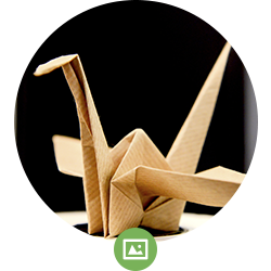 fotos-zellcheming-img-origami.png
